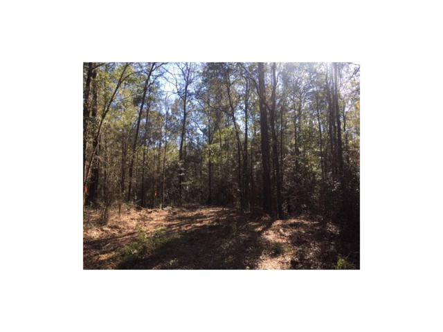 0 Chunchula-Georgetown Road, Chunchula, AL 36521 (MLS #608611) :: Jason Will Real Estate