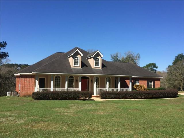 2645 Scenic Lake Drive, Semmes, AL 36575 (MLS #610346) :: Jason Will Real Estate
