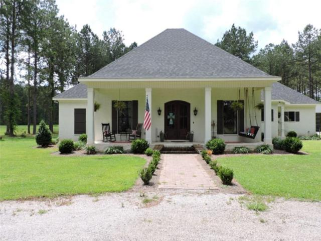 5940 Natchez Highway, Wilmer, AL 36587 (MLS #614816) :: Jason Will Real Estate