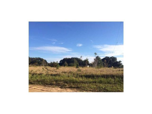 0 Strickland Lane, Grand Bay, AL 36541 (MLS #615532) :: Jason Will Real Estate