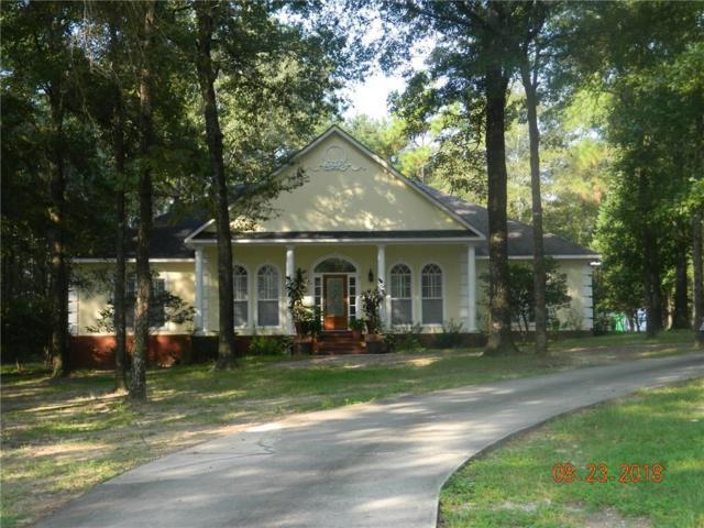 6311 Celeste Road, Saraland, AL 36571 (MLS #618142) :: Jason Will Real Estate