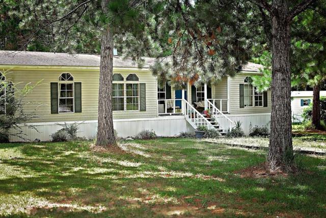 8632 Wilmer Georgetown Road, Wilmer, AL 36587 (MLS #618716) :: Jason Will Real Estate