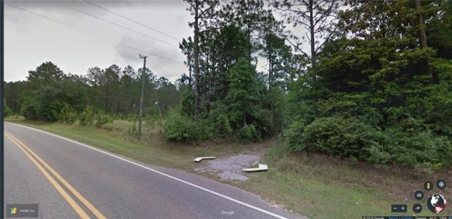 12136 County Road 64, Loxley, AL 36551 (MLS #619388) :: Jason Will Real Estate