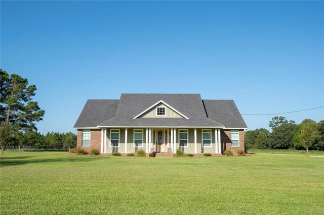 25475 County Road 55, Loxley, AL 36551 (MLS #619553) :: Jason Will Real Estate