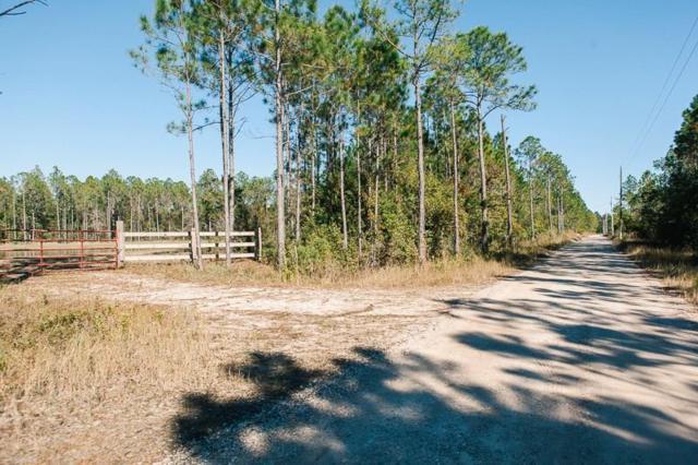 0 Burkowski Lane, Gulf Shores, AL 36542 (MLS #620577) :: Jason Will Real Estate