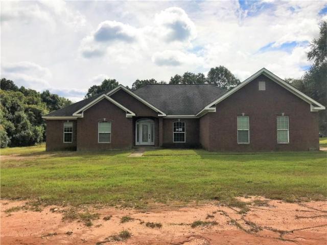 8635 Three Mile Road, Irvington, AL 36544 (MLS #620771) :: Jason Will Real Estate
