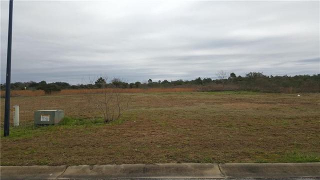 42 Cold Mill Loop, Foley, AL 36535 (MLS #623459) :: Jason Will Real Estate