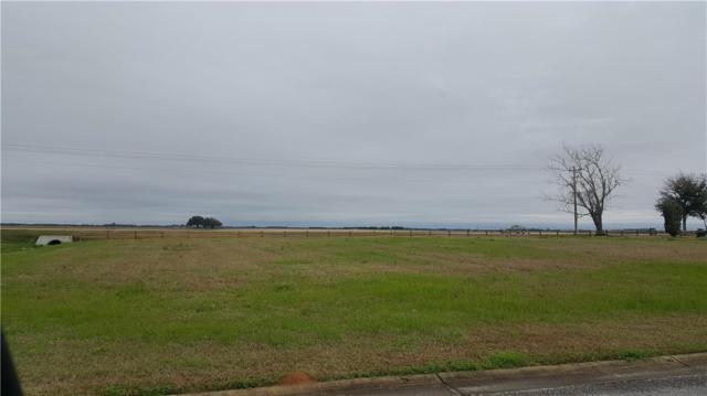 3 Cold Mill Loop, Foley, AL 36535 (MLS #623641) :: Jason Will Real Estate