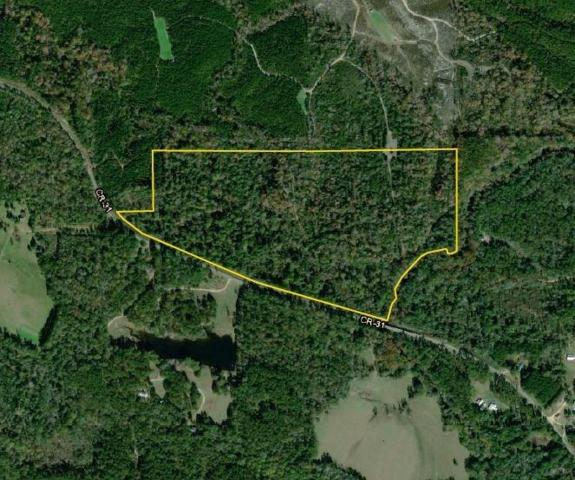 0 County Hwy 31, Millry, AL 36558 (MLS #624083) :: Jason Will Real Estate