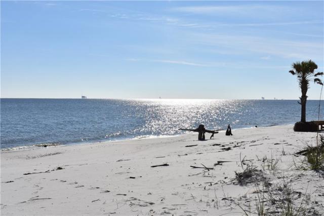 335 Audubon Place #18, Dauphin Island, AL 36528 (MLS #626742) :: Berkshire Hathaway HomeServices - Cooper & Co. Inc., REALTORS®