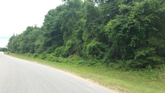 0 Danner Road, Wilmer, AL 36587 (MLS #628870) :: Jason Will Real Estate