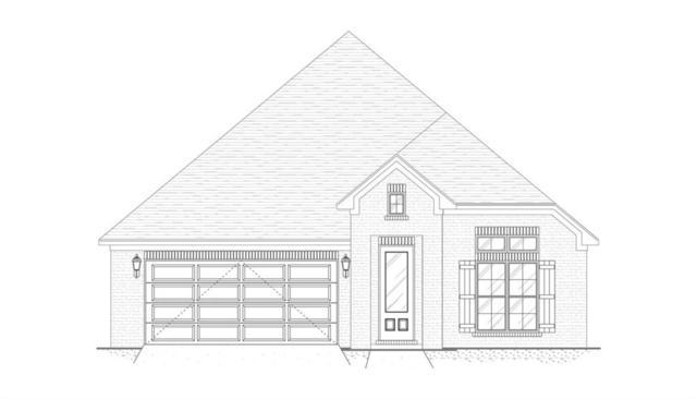 31771 Canopy Loop, Spanish Fort, AL 36527 (MLS #629746) :: Jason Will Real Estate