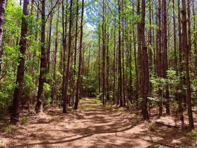 0 Woods Road, Citronelle, AL 36522 (MLS #629812) :: Berkshire Hathaway HomeServices - Cooper & Co. Inc., REALTORS®