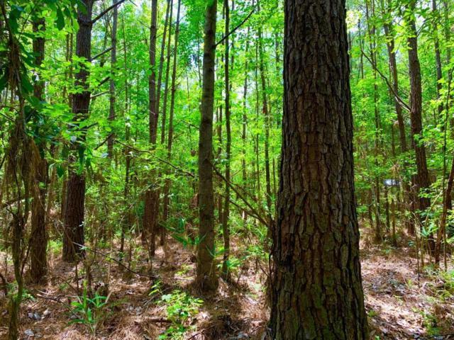0 Woods Road, Citronelle, AL 36522 (MLS #629813) :: Berkshire Hathaway HomeServices - Cooper & Co. Inc., REALTORS®