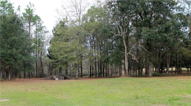 18400 Bayleaf Lane, Citronelle, AL 36522 (MLS #630270) :: JWRE Mobile