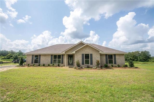 10699 Coleman Dairy Road, Semmes, AL 36575 (MLS #630920) :: Jason Will Real Estate