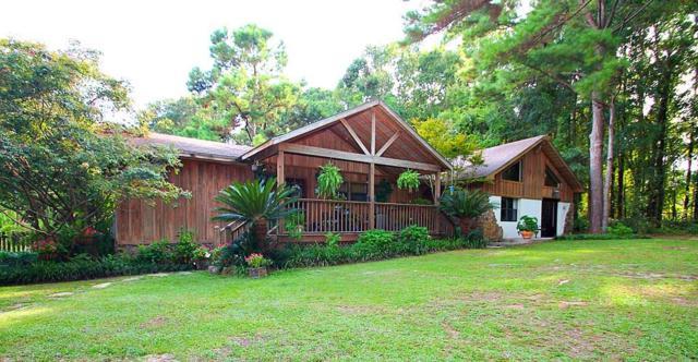 14163 Sherwood Highland Road, Fairhope, AL 36532 (MLS #630974) :: Jason Will Real Estate