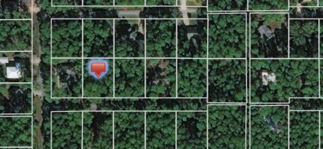 908 Laffite Place, Dauphin Island, AL 36528 (MLS #634417) :: Berkshire Hathaway HomeServices - Cooper & Co. Inc., REALTORS®