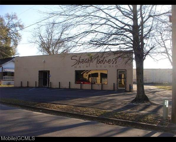 160 Garnett Avenue, Mobile, AL 36604 (MLS #643148) :: Mobile Bay Realty