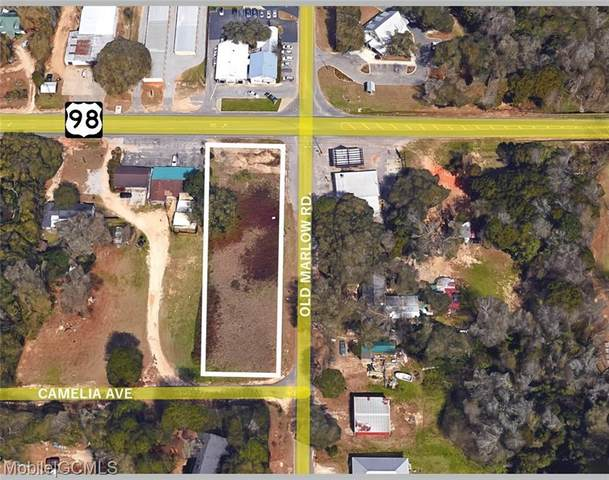 14972 Highway 98, Magnolia Springs, AL 36535 (MLS #644550) :: JWRE Powered by JPAR Coast & County