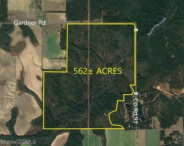 15531 County Road 91, Elberta, AL 36567 (MLS #645063) :: JWRE Powered by JPAR Coast & County
