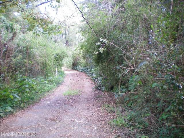 413 Shelton Beach Road, Eight Mile, AL 36613 (MLS #645773) :: Berkshire Hathaway HomeServices - Cooper & Co. Inc., REALTORS®