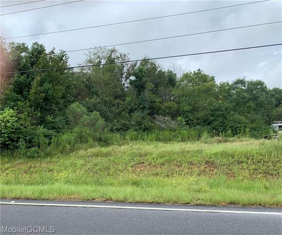 0 Mcfarland Road S, Theodore, AL 36582 (MLS #646628) :: JWRE Powered by JPAR Coast & County