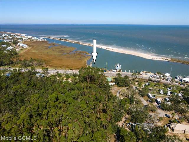 113 Bienville Boulevard, Dauphin Island, AL 36528 (MLS #646706) :: JWRE Powered by JPAR Coast & County