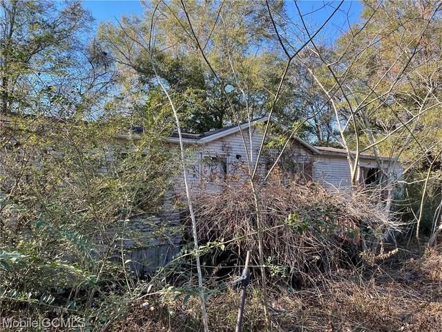 10745 Georgetown Hills Court, Chunchula, AL 36521 (MLS #647225) :: Berkshire Hathaway HomeServices - Cooper & Co. Inc., REALTORS®