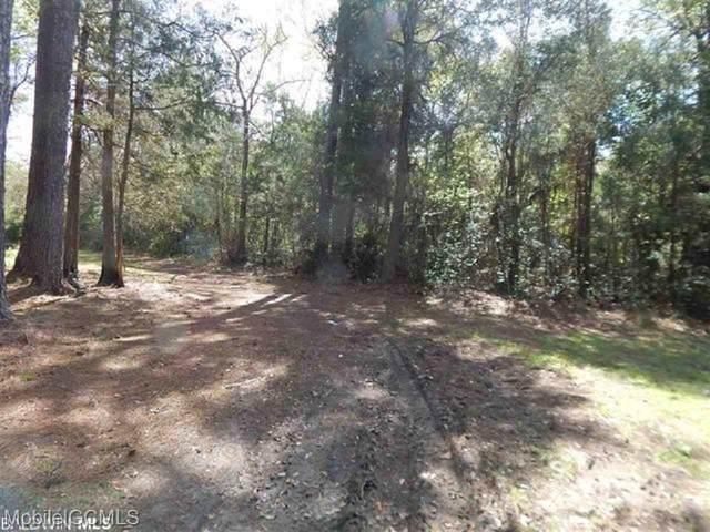 0 Nolte Creek Drive, Magnolia Springs, AL 36555 (MLS #647396) :: JWRE Powered by JPAR Coast & County