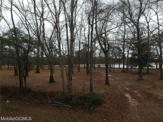 0 Dead Lake Marina Road 1,2,4, Creola, AL 36525 (MLS #648216) :: Berkshire Hathaway HomeServices - Cooper & Co. Inc., REALTORS®