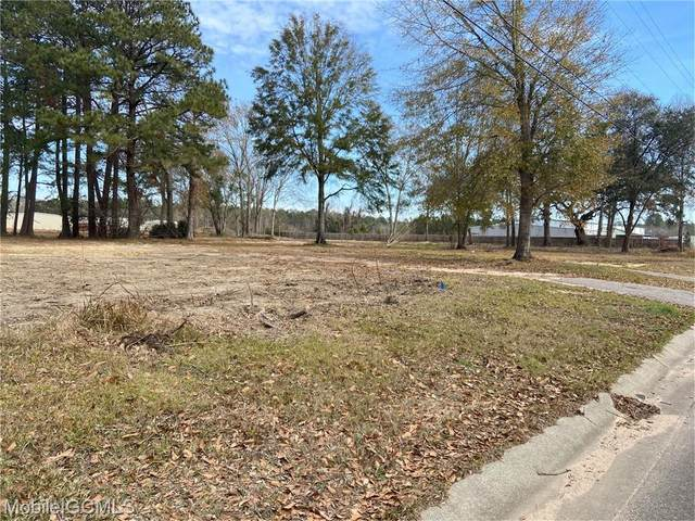 5530 Plantation Road, Theodore, AL 36582 (MLS #648268) :: Berkshire Hathaway HomeServices - Cooper & Co. Inc., REALTORS®