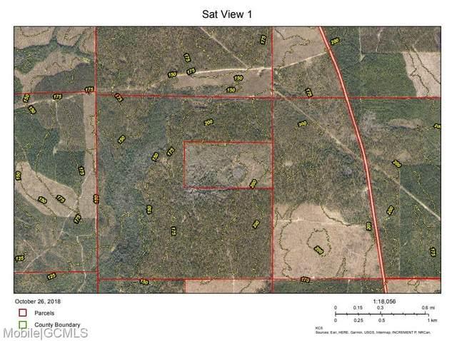 25001 Brady Mill Dam Road, Bay Minette, AL 36507 (MLS #649486) :: Mobile Bay Realty