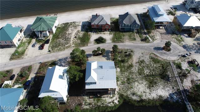 324 Audubon Place, Dauphin Island, AL 36528 (MLS #650731) :: Mobile Bay Realty
