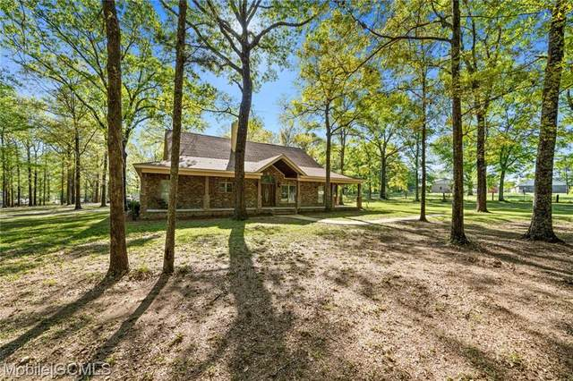 7662 Lott Road, Wilmer, AL 36587 (MLS #650857) :: Mobile Bay Realty