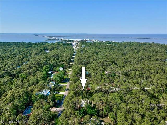 128 Lemoyne Drive, Dauphin Island, AL 36528 (MLS #650922) :: Berkshire Hathaway HomeServices - Cooper & Co. Inc., REALTORS®
