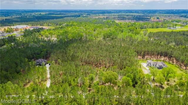 33507 Highway 31 J, Spanish Fort, AL 36527 (MLS #650979) :: Elite Real Estate Solutions
