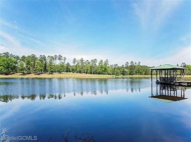 1000 Celeste Springs Drive, Saraland, AL 36571 (MLS #651343) :: Mobile Bay Realty