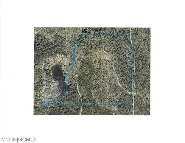 0 C C Camp Road 13, Chunchula, AL 36521 (MLS #652161) :: Mobile Bay Realty
