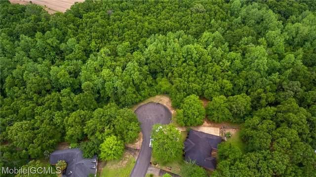 0 Deer Track Drive, Semmes, AL 36619 (MLS #652279) :: Berkshire Hathaway HomeServices - Cooper & Co. Inc., REALTORS®