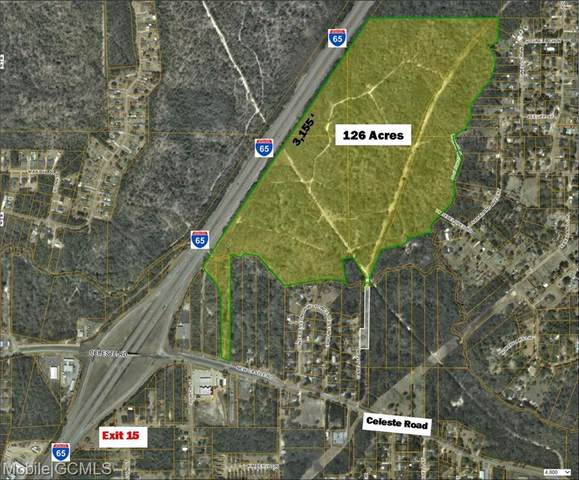 604 Celeste Road, Saraland, AL 36571 (MLS #653779) :: Elite Real Estate Solutions