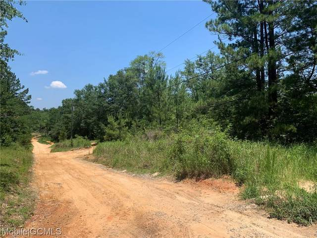 8650 Countryview Drive E, Wilmer, AL 36587 (MLS #653785) :: Elite Real Estate Solutions
