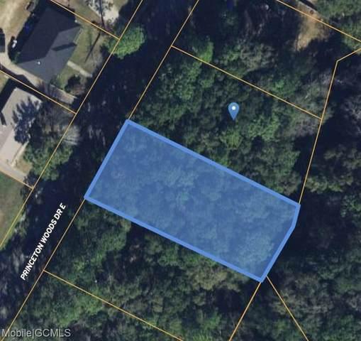 1770 Princeton Woods Drive E, Mobile, AL 36618 (MLS #654895) :: Elite Real Estate Solutions