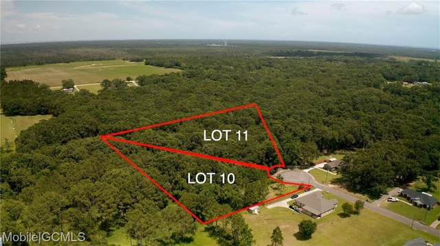 0 Bay Oaks Place Drive, Irvington, AL 36544 (MLS #655340) :: Elite Real Estate Solutions