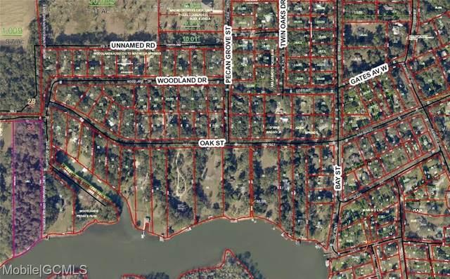 13951 Woodland Drive, Magnolia Springs, AL 36555 (MLS #657487) :: HergGroup Gulf Coast