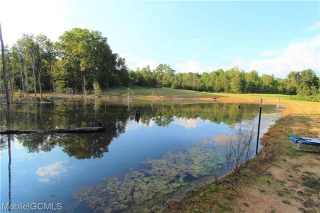 794 Dry Lake Road, LUVERNE, AL 36049 (MLS #658172) :: Mobile Bay Realty