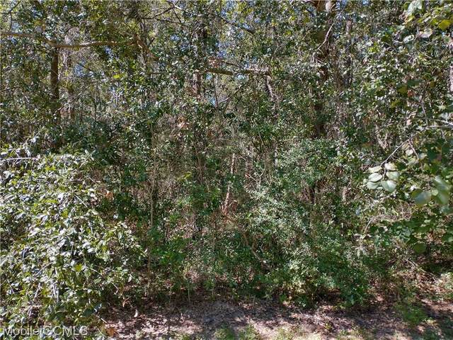 1108 Narbonne Place, Dauphin Island, AL 36582 (MLS #658221) :: Mobile Bay Realty