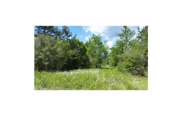 0 Private Road 304, Semmes, AL 36575 (MLS #518592) :: Jason Will Real Estate