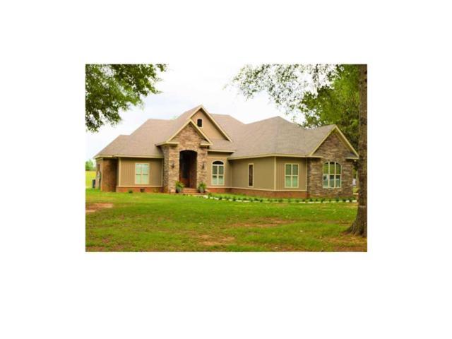 10020 Wilmer Georgetown Road, Wilmer, AL 36587 (MLS #544566) :: Jason Will Real Estate
