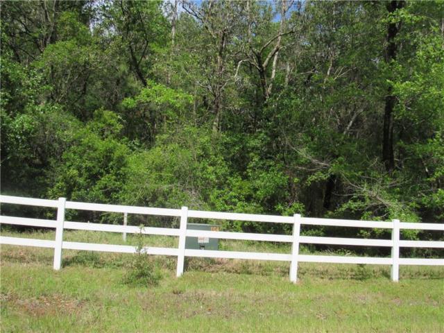 0 Sonneborn Drive #9, Theodore, AL 36582 (MLS #613367) :: Berkshire Hathaway HomeServices - Cooper & Co. Inc., REALTORS®